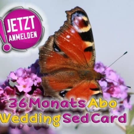 wedding sed card 36 monate