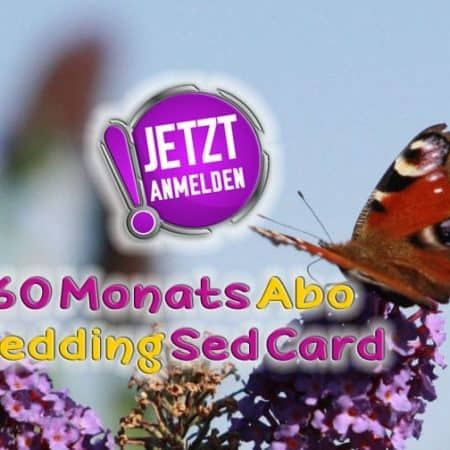 wedding sed card 60 monate