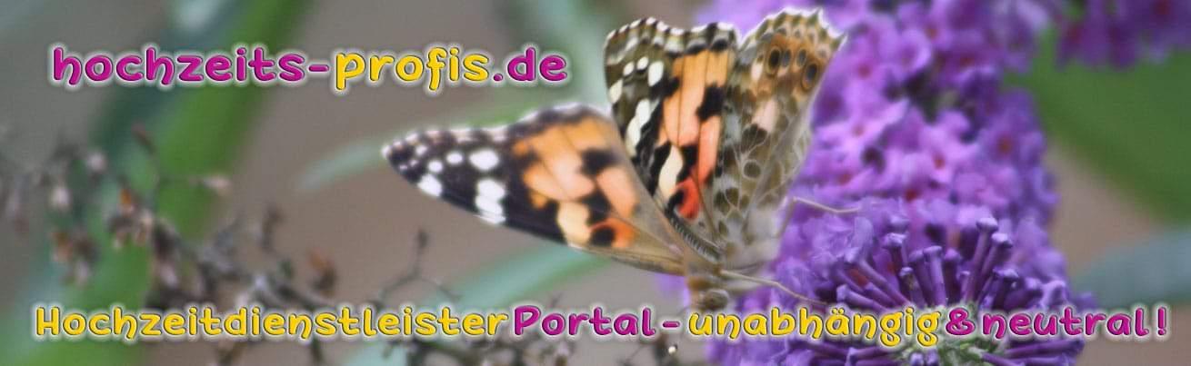 hochzeit dienstleister portal, hochzeitsprofi portal
